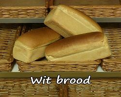Witbrood